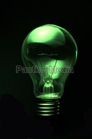 light, bulb - 247491
