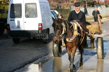 man, with, horse, cart, (albania) - 247707
