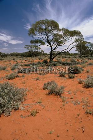 australia, outback - 250761
