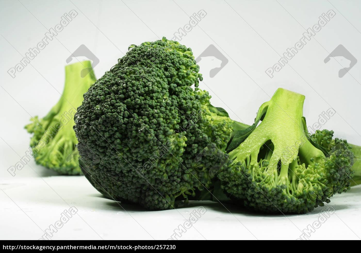 broccoli - 257230
