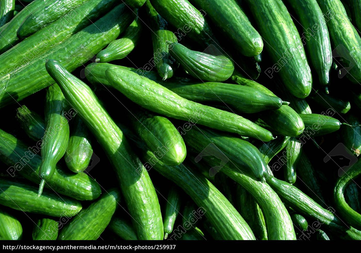 cucumbers - 259937