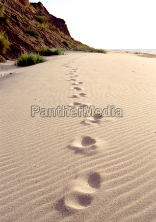 your footprints in the sand
