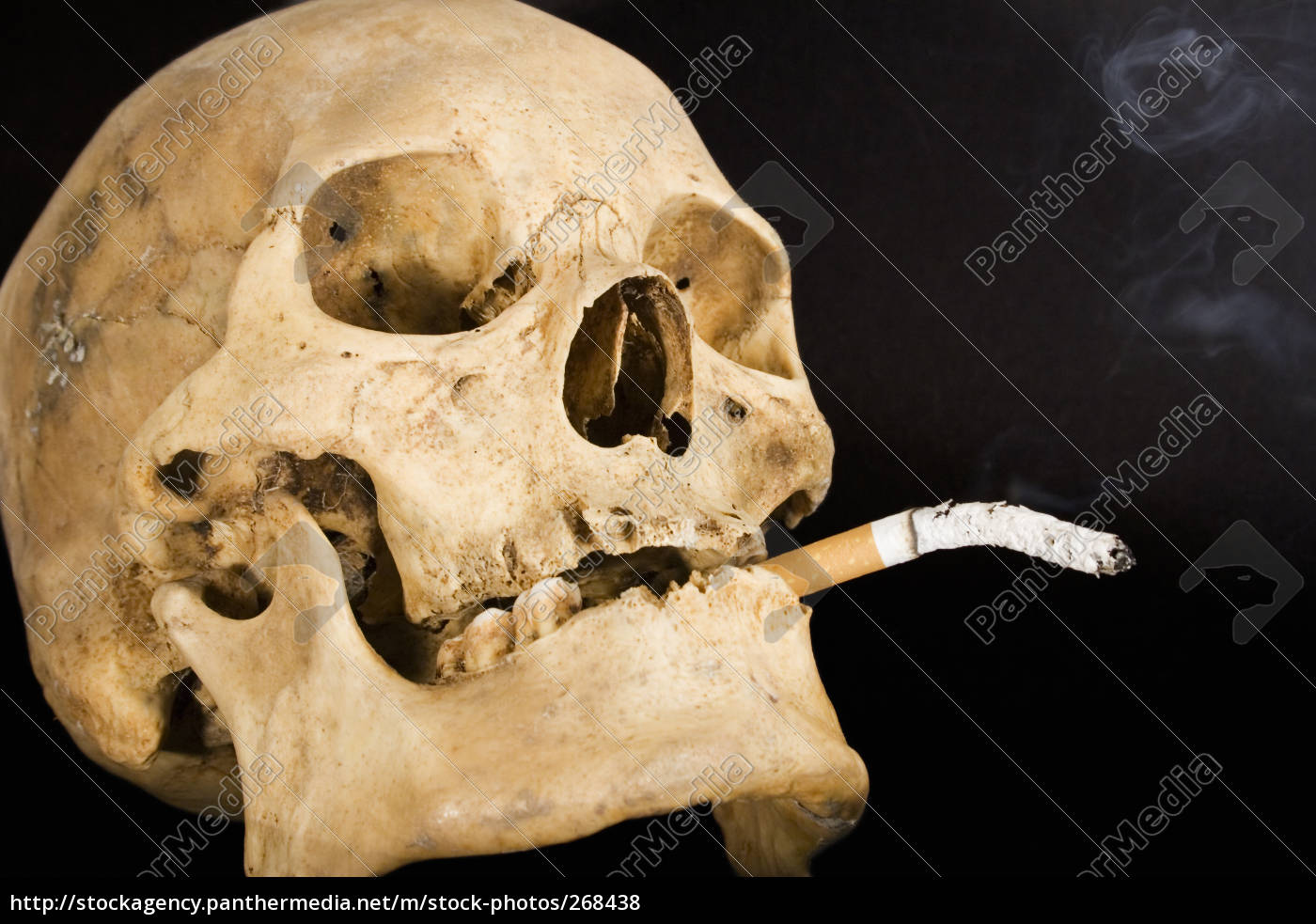 smoking, kills - 268438