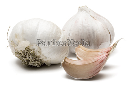 clove, of, garlic - 271034