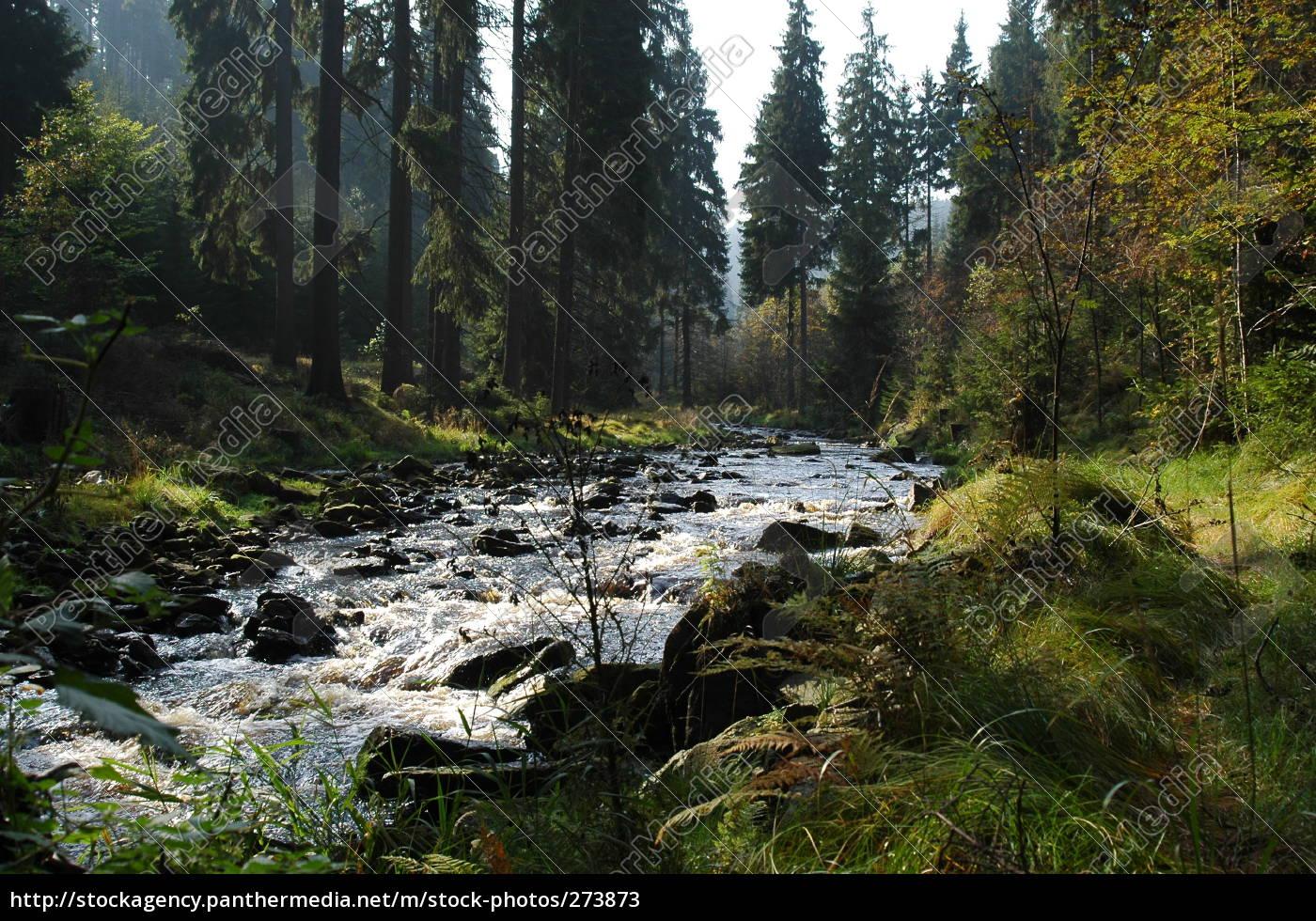 schwarzwassertal, 2 - 273873
