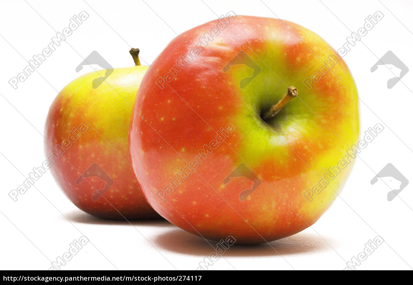 two, red-yellow, apples, lying, and, standing - 274117