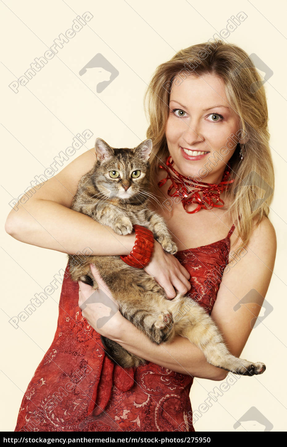 two, cats - 275950