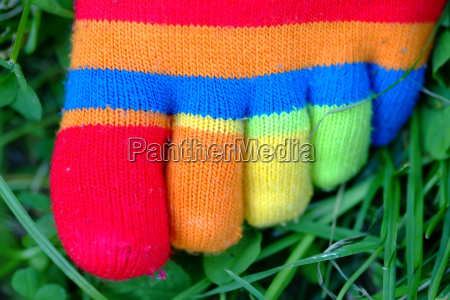 colorful sock