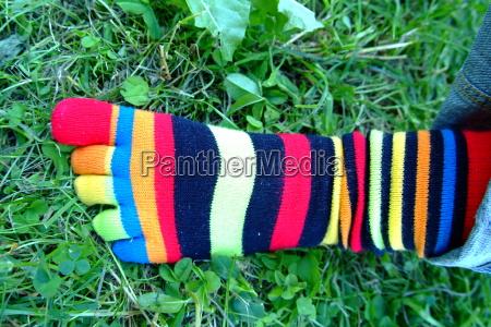 colorful sock 3