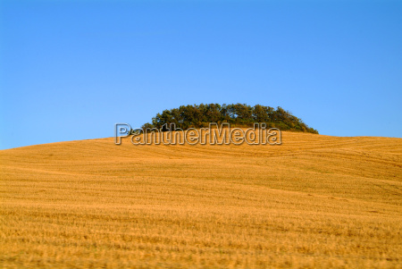 blue city town tree hill horizon
