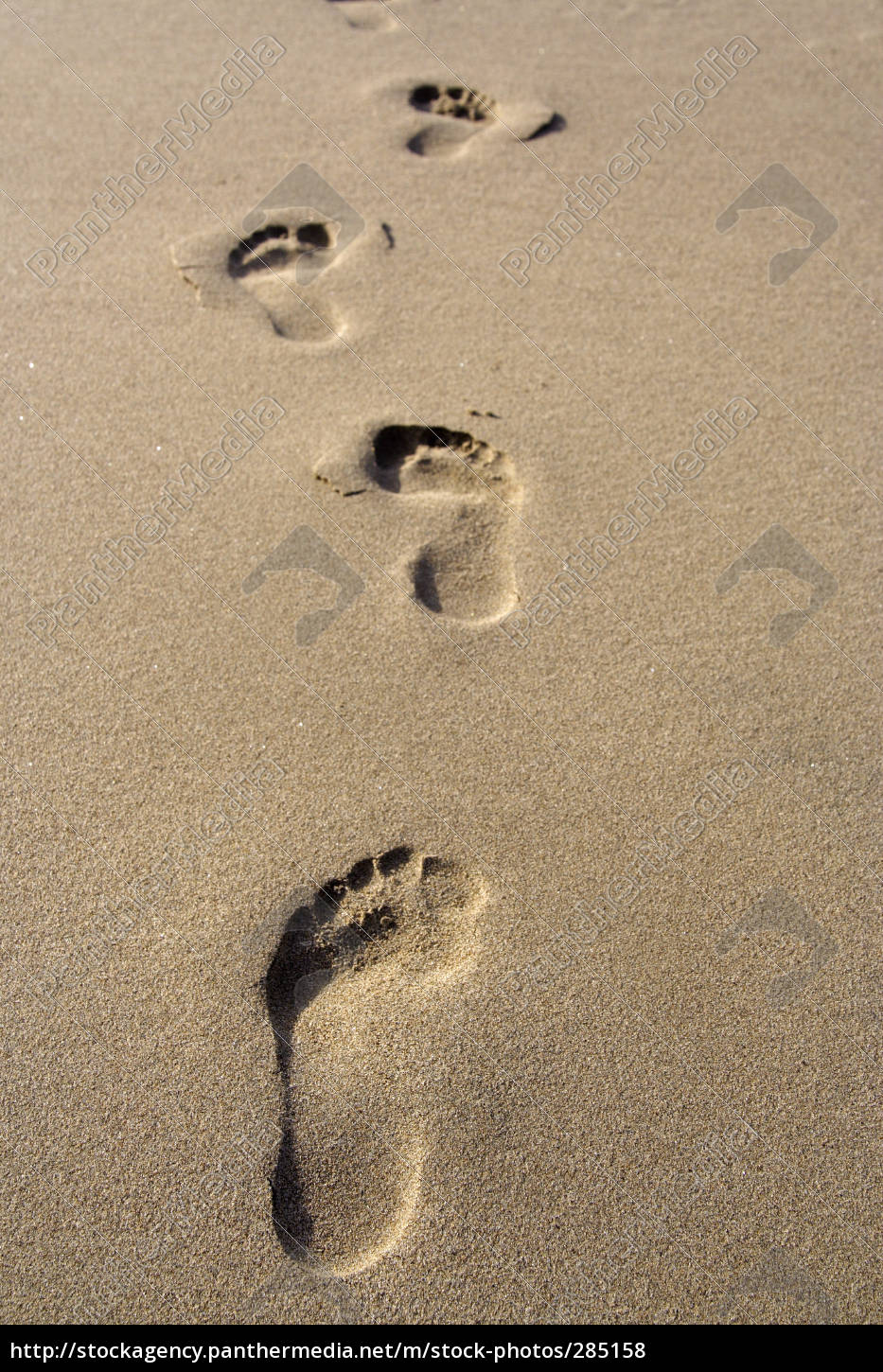 traces, in, the, sand - 285158