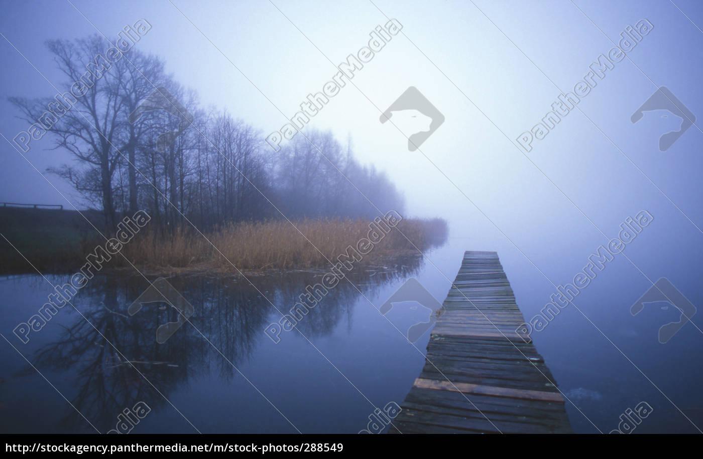 fog - 288549