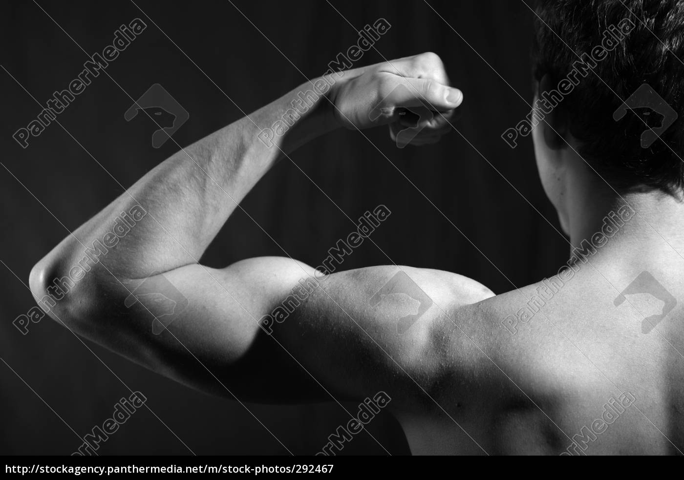 strong, arm - 292467