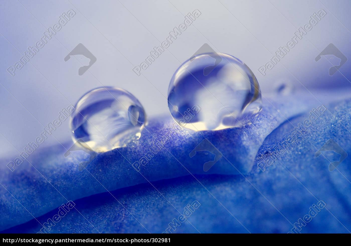water, drops - 302981