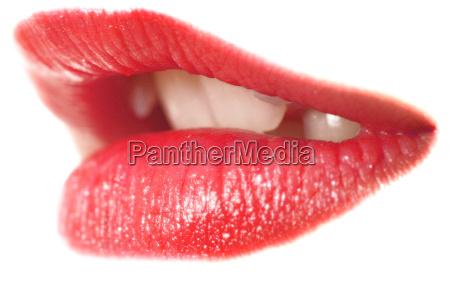 red, temptation - 311652