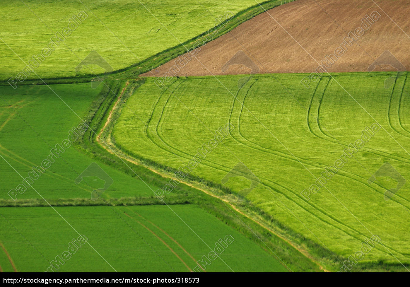 field, and, field - 318573