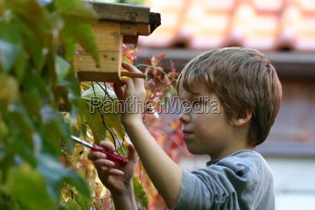 nesting, box - 320580