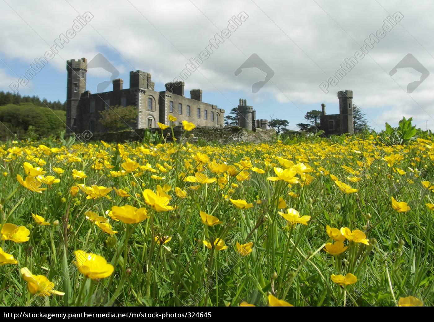 castletown-hall., 2 - 324645