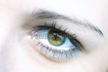 green, eyes - 327034