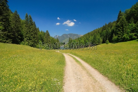 way, to, rießersee - 330446