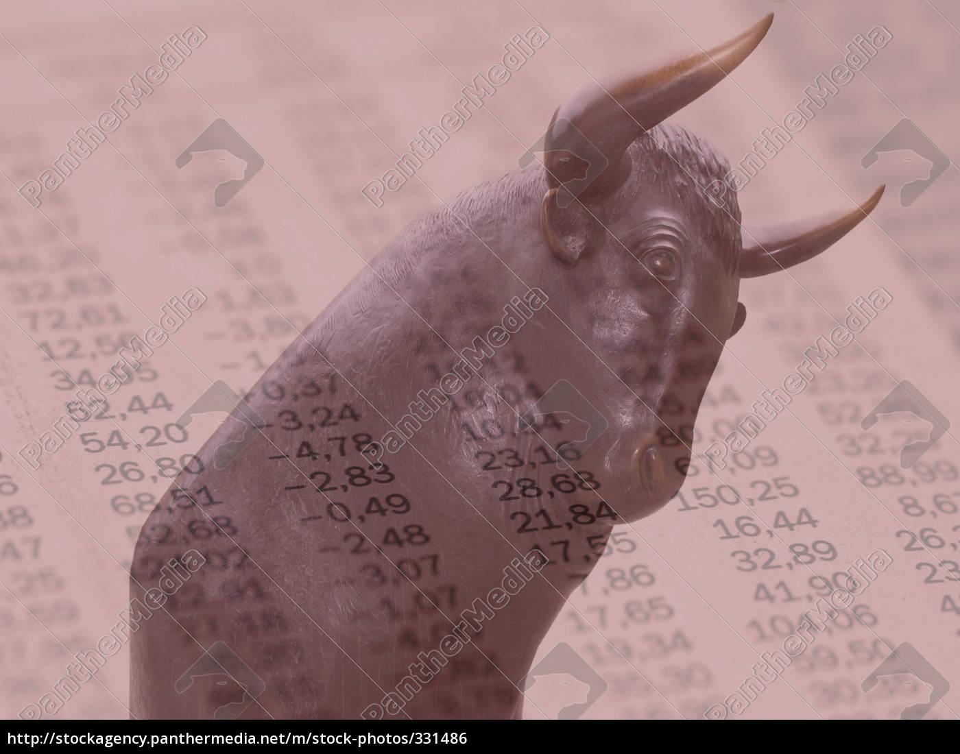 bull, market - 331486