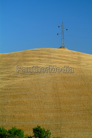 hochspannungsmast on wheat field
