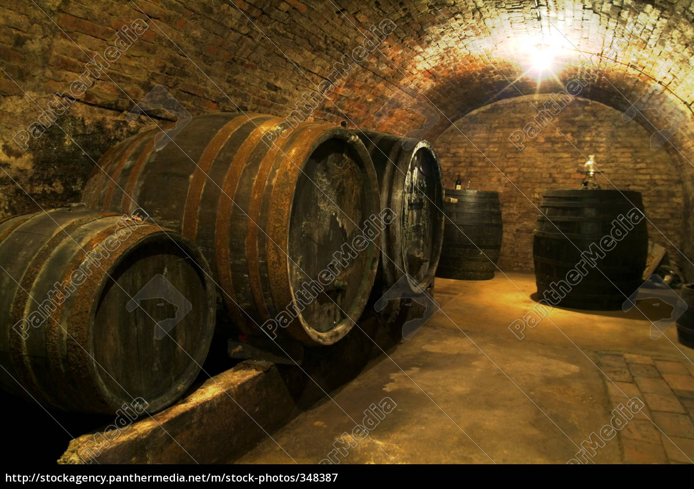 wine, cellar, 2 - 348387