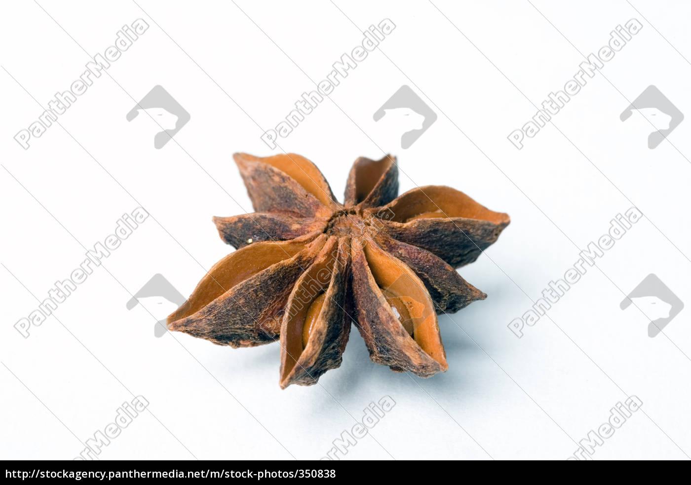 star, anise - 350838