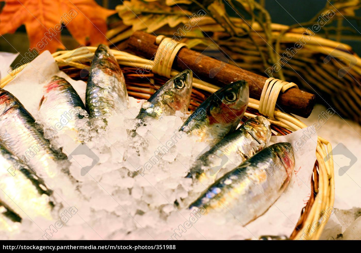 fish, market - 351988