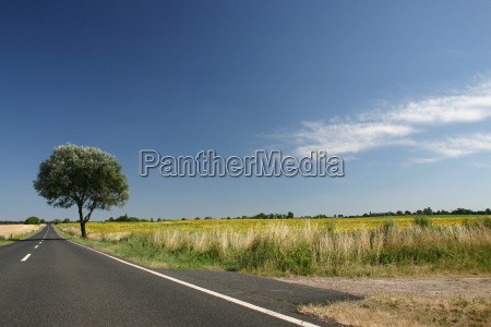 country, road - 360117