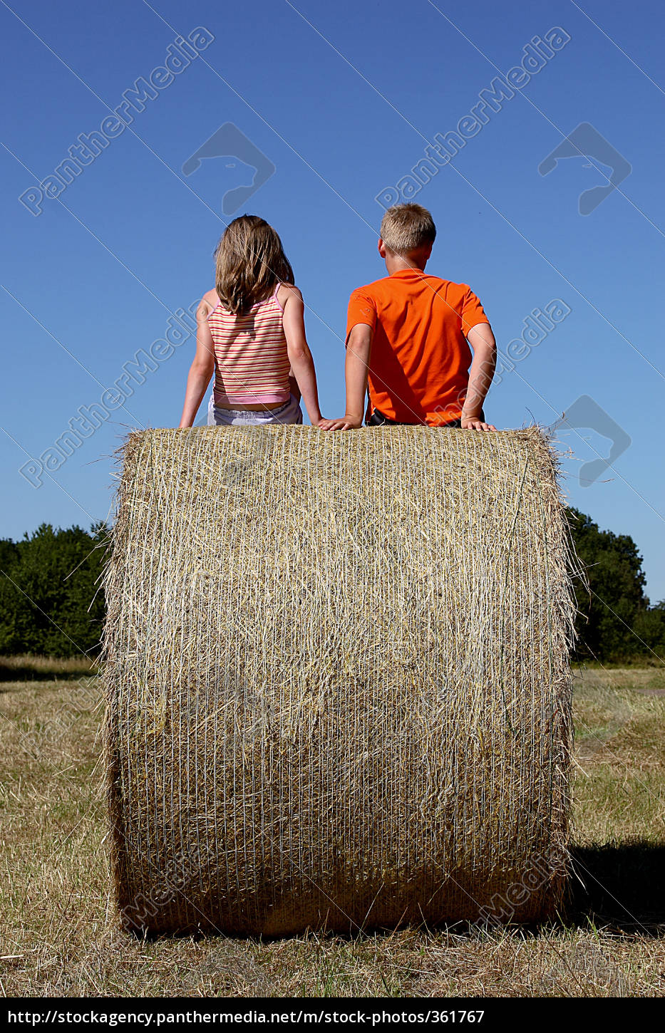 two, on, the, hay, bales - 361767