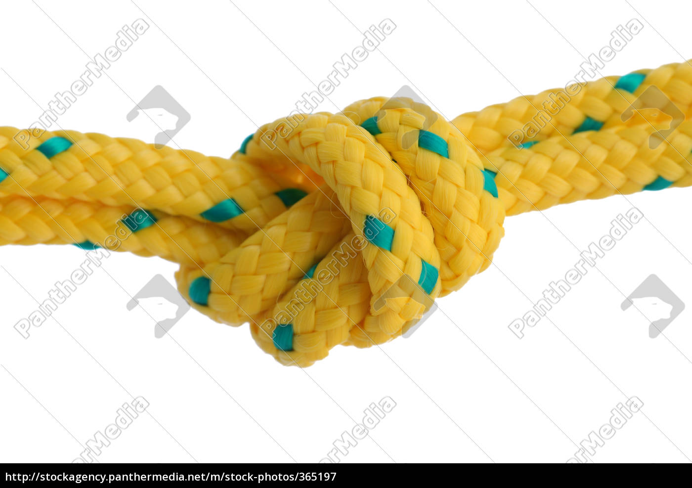 knotted - 365197