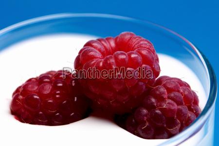 yogurt, views - 366406