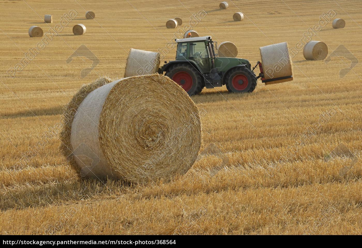 harvest, time - 368564
