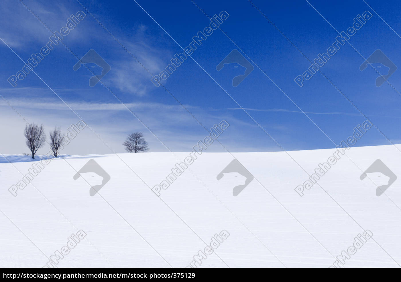 snowlandscape - 375129