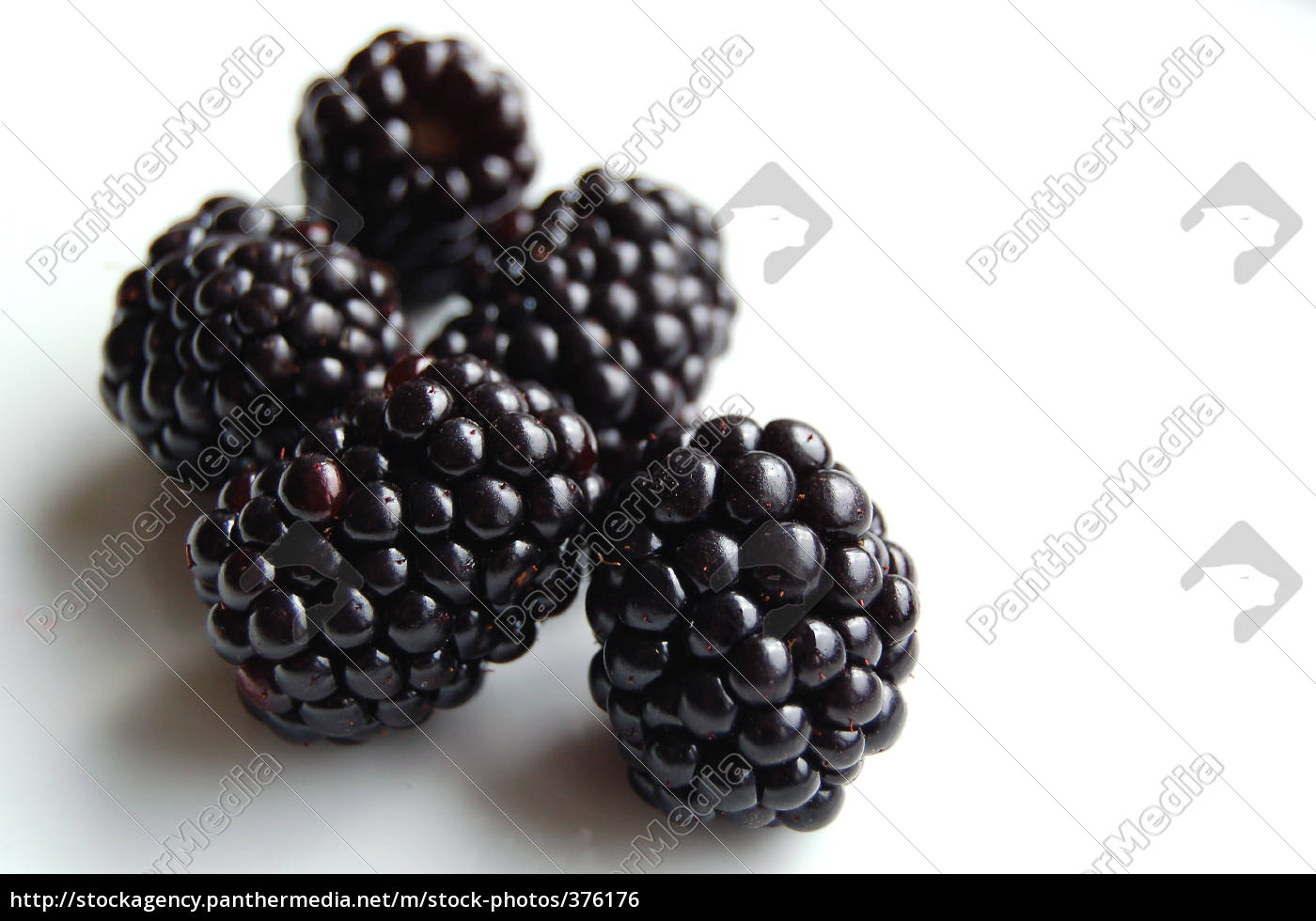 a, few, blackberries - 376176
