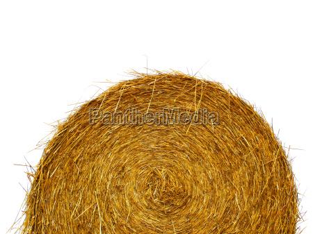 straw, roll, free - 377484