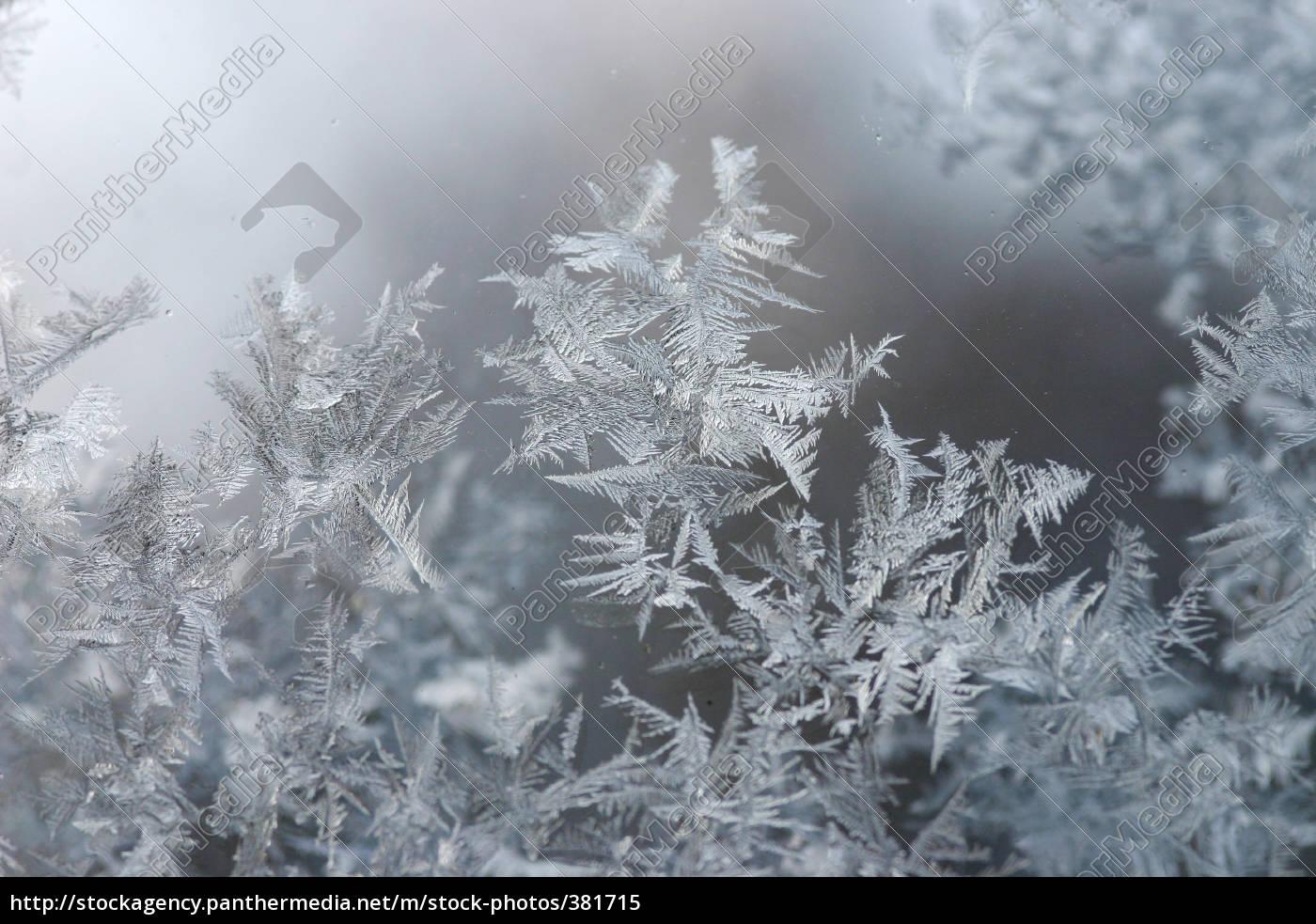 frost, pattern - 381715