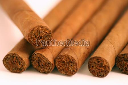 cigar - 387445