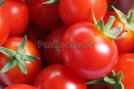 tomaten16 - 388237