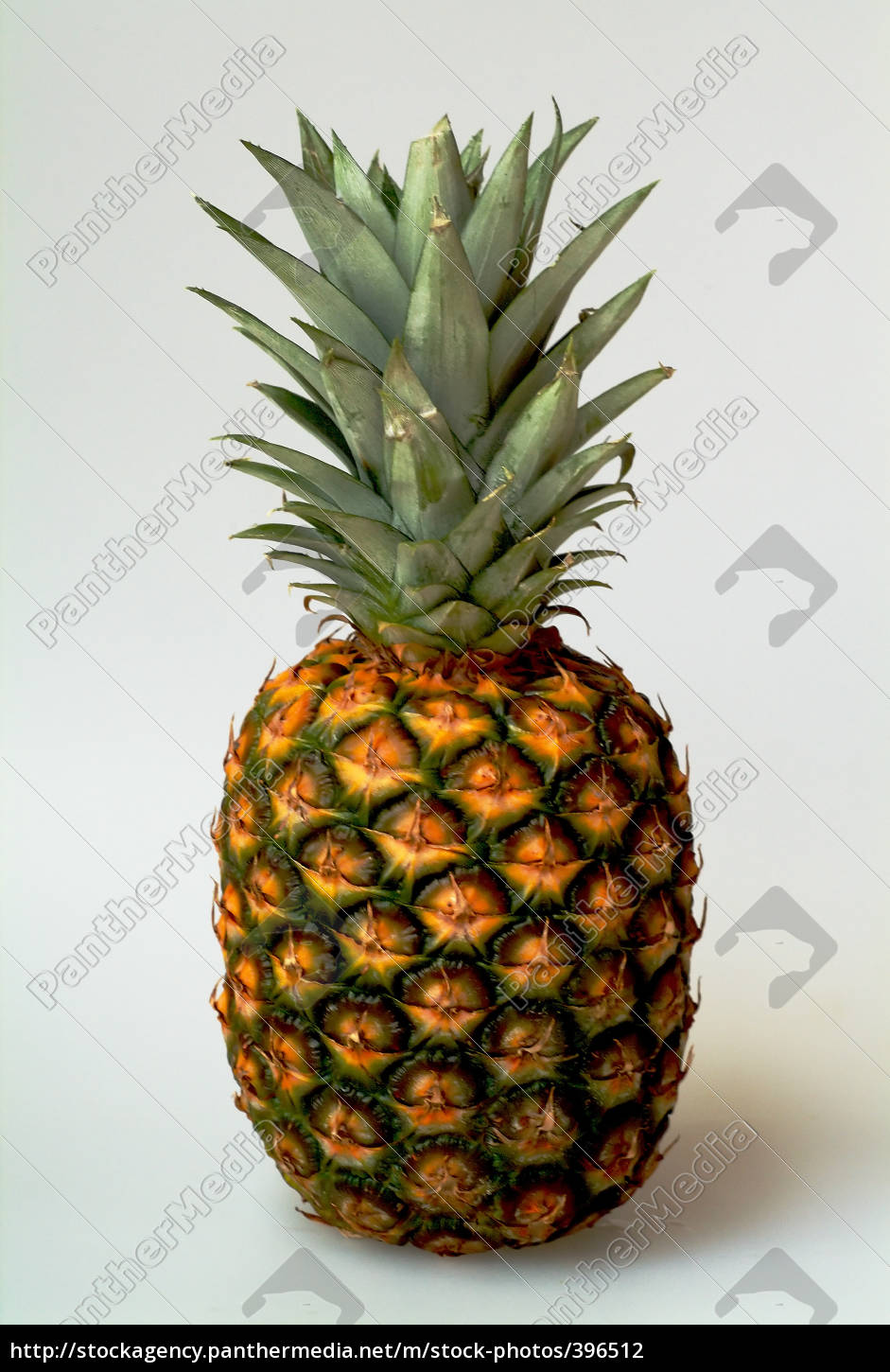 exempted, pineapple - 396512