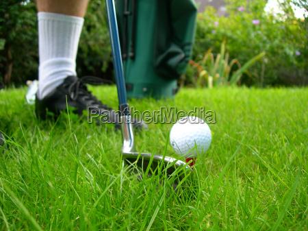 golf - 406615