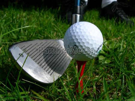 golf - 406621
