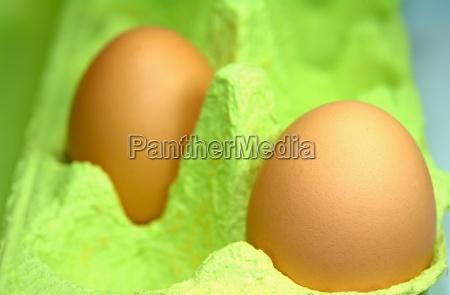 chicken, egg - 413674