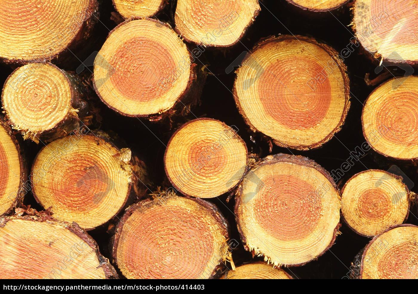 wood - 414403