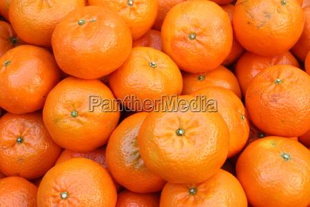tangerines - 431919