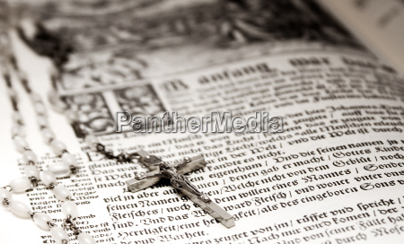 whipped, bible - 438954