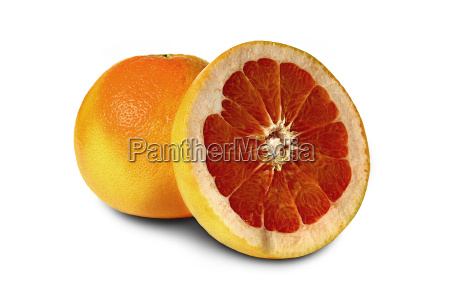 grapefruit - 443157