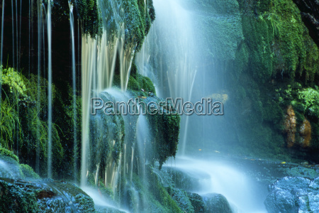 waterfall, in, australia, with, moss - 443883