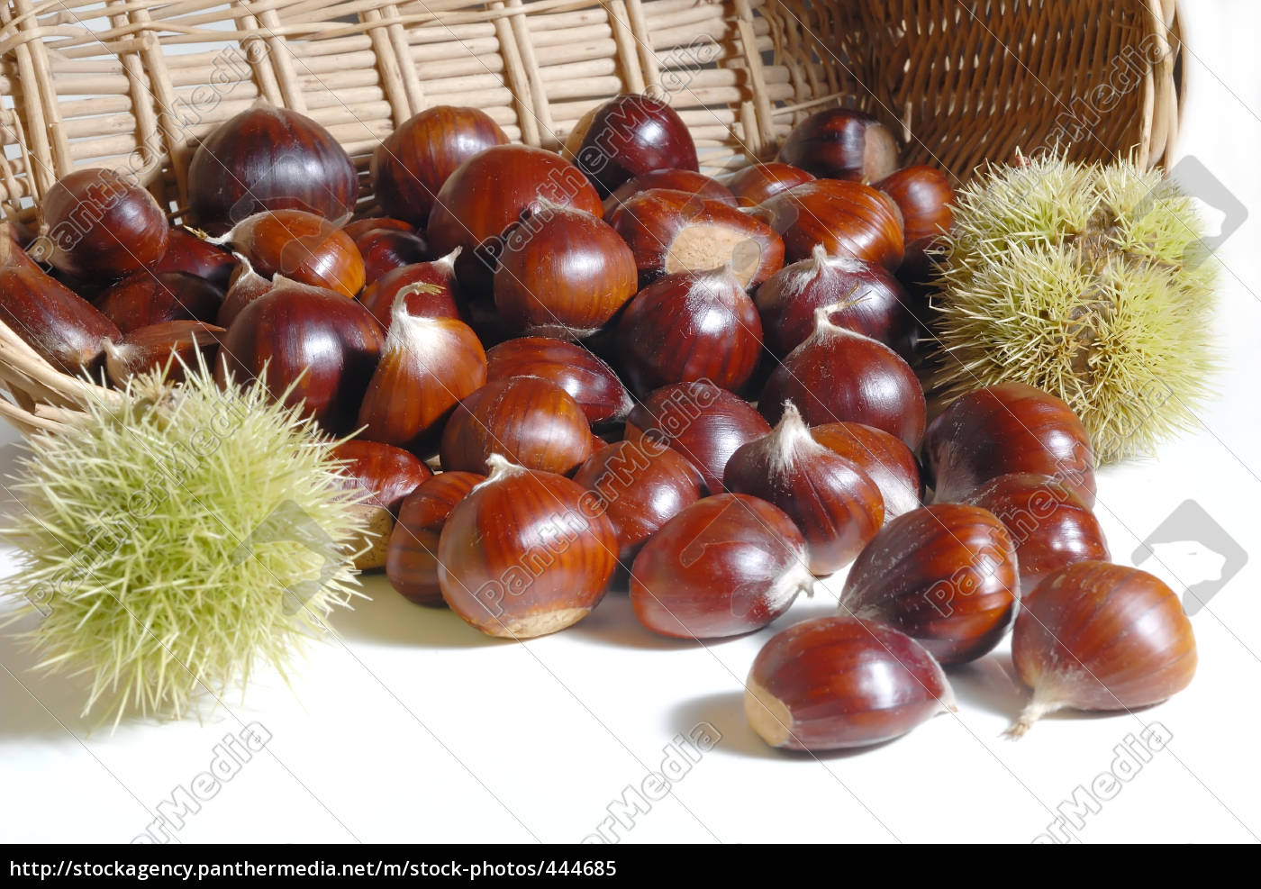 chestnuts, 23 - 444685